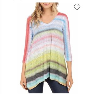 Chelsea & Theodore Watercolor Sweater Size 2X New